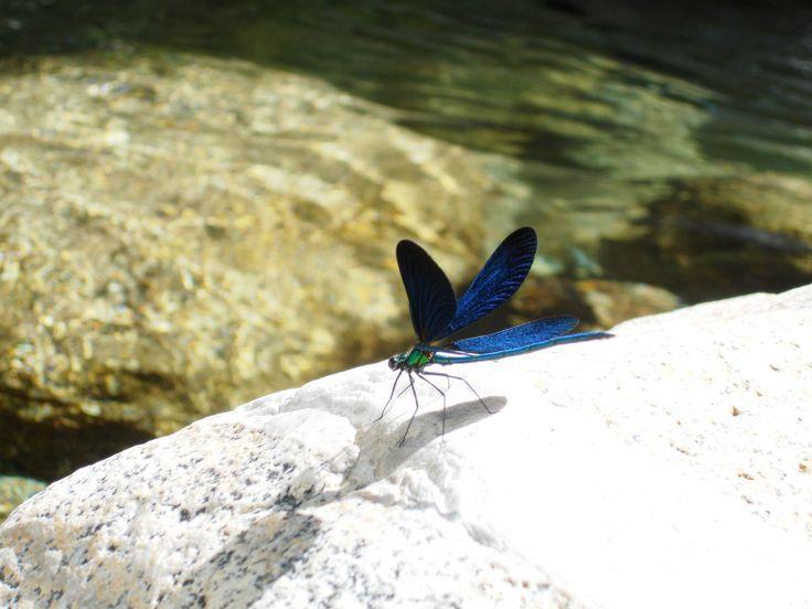 samothraki fonias river