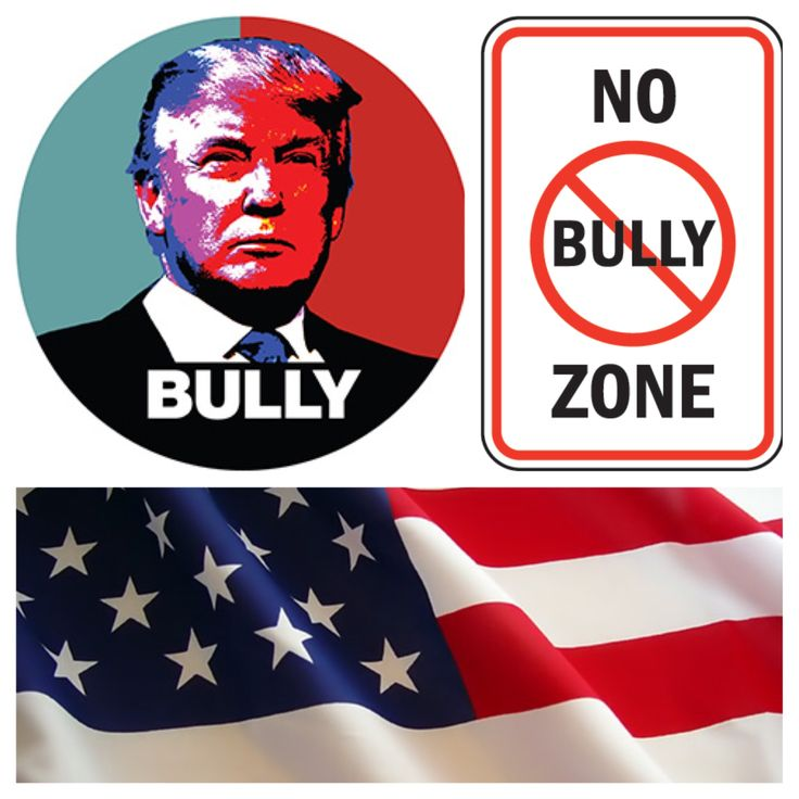 The United States is a No Bully Zone !! Say NO to Donald Trump ...