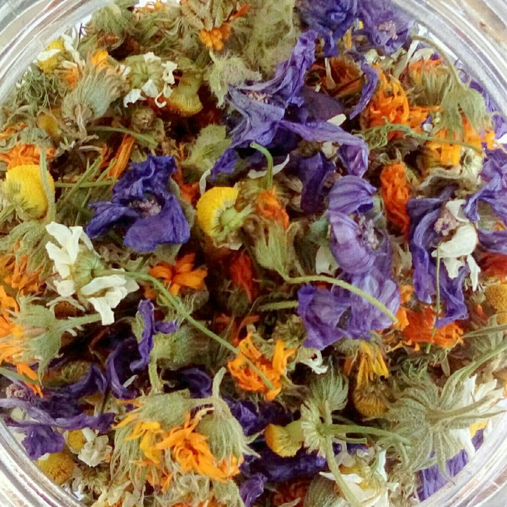 Freshly wild harvested botanicals are ready to infuse for the next batch of our Queen Bee Balm!