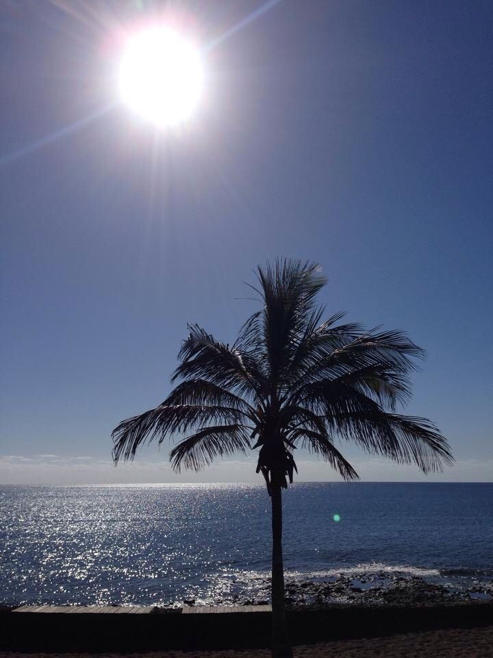 Costa Teguise Lanzarote - love this place