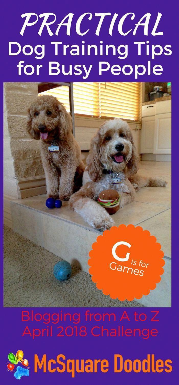 Dog Food Secrets Dog Training Tips Dog Training Obedience