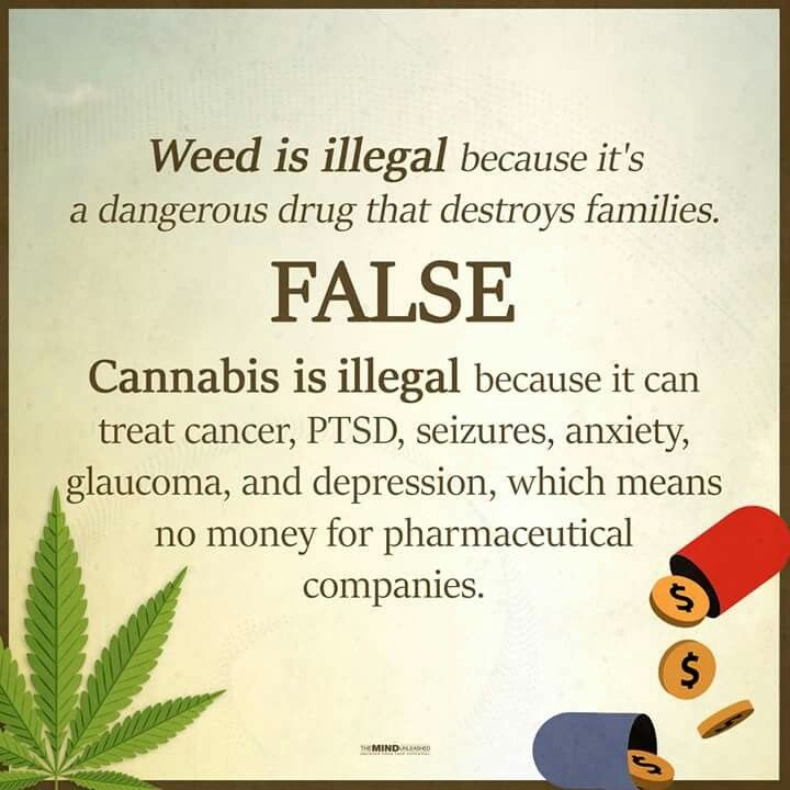 False. Weed is illegal because ...