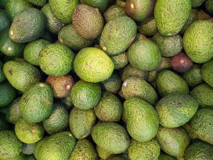 Avokadonun faydaları ve bebeklerde avokado tüketimi | Sağlıklı Besin - Yaşam ve Sağlık Blog'u