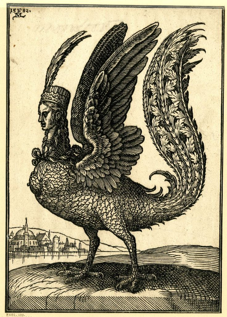 A harpy; facing left; bird-like creature with a long tail and human head, by Melchior Lorck, c.1582.
