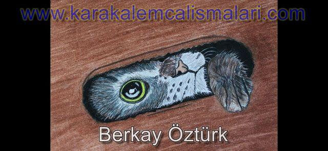 Uc Boyutlu Kedi Nasil Cizilir Adim Adim Uc Boyutlu Kedi Cizimi Karakalem Calismalari Cizim Kedi Cizimler