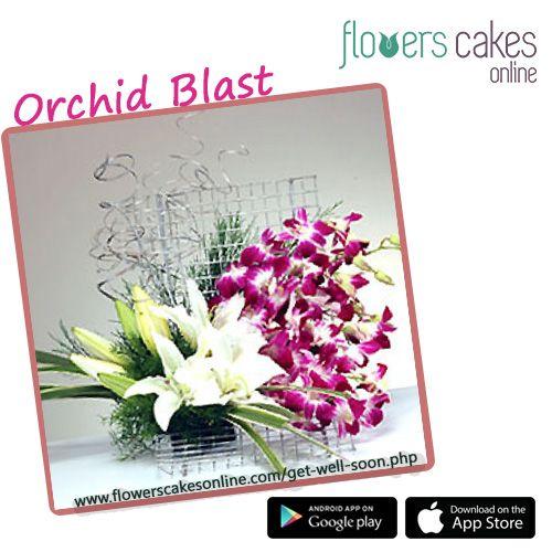 Купить цветы android купить комнатные цветы оптом в москве дешево