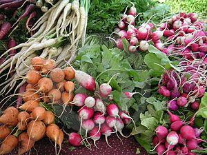 362 mejores imgenes de Hortalizas verduras frutas en