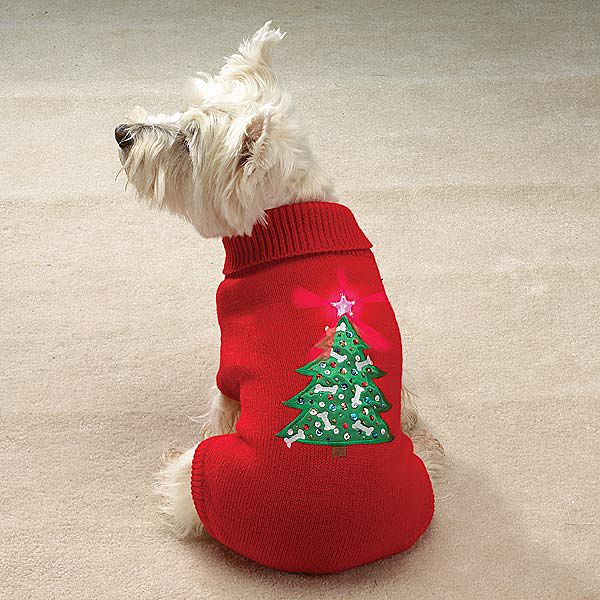 1000 Images About Ugly Christmas Sweater Ideas On