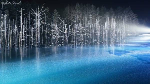 青い池のライトアップ- 初日は大盛況!【Kent Shiraishi Photo Studio】
