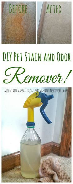 DIY Pet Stain and Odor Remover Recipe| Great for tough cat urine stains| Mountains Mamas' Blog| http://2momsnaturalskincare.com/