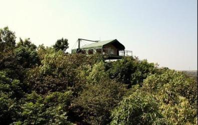Canopy Machan at The Machan, Maharashtra, India
