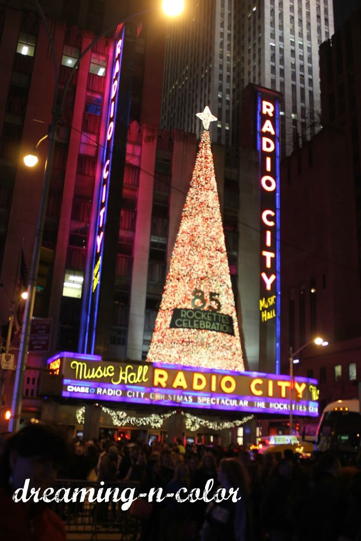We had a lifetime of memories made there for our honeymoon. Everything on the list is something that've did plus a few more!! Don't forget to observe the city at night from The Empire State Building. Truly the best Christmas vacation ever!!!