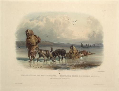 Dog Sledges of the Mandan Indians, plate 28 from Volume 2 of 'Travels in the Interior of North America'  - Karl Bodmer