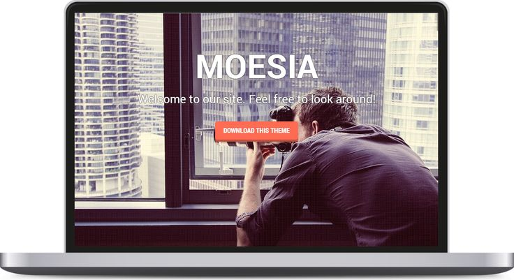 Moesia is a striking business theme you can use to build an effective online presence.