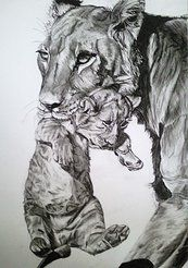 Lioness and cub - charcoal drawing