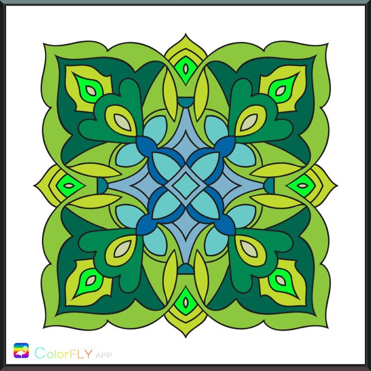 g708 color fly coloring pages - photo#42