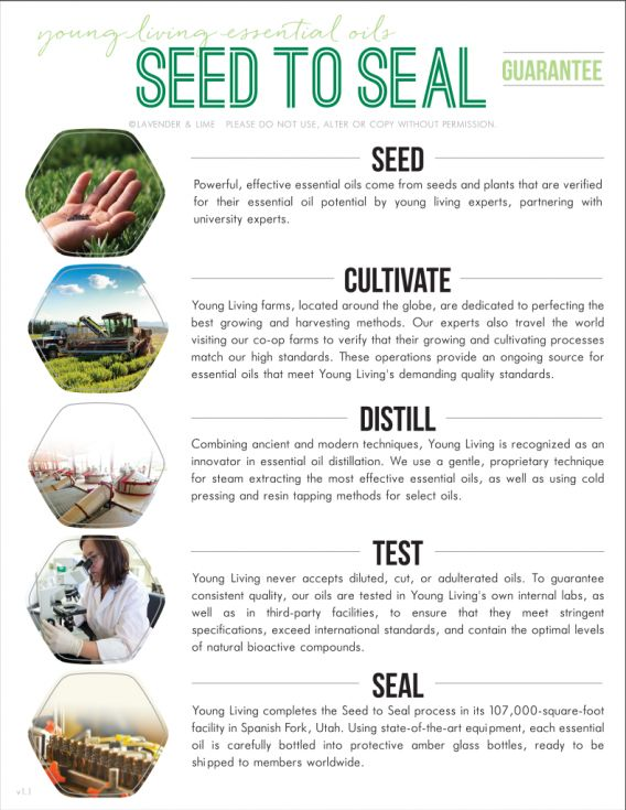 17 Best images about Young Living on Pinterest ...