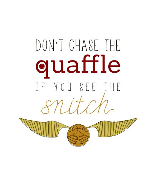 Except a seeker would never be looking for a quaffle and a chaser wouldn't be chasing the snitch but wise words☺️<--- WELL, Harry technically watched the game AKA: Quaffle from above before finding the snitch. Once he did, however, nothing kept him from it!