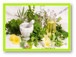 Η ΛΙΣΤΑ ΜΟΥ: Αυτά είναι τα βότανα που θωρακίζουν και προστατεύο...