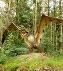 Cearadactylus, un dinosaure volant (illustration)
