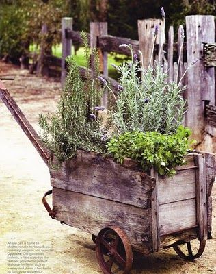 Oh my, what a lovely idea for some pallet wood!  From Brabourne Farm: Jardins