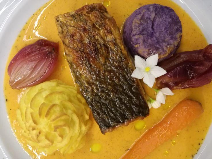 Salmone su gazpacho tiepido con patata vitelotte, cipolla in agrodolce