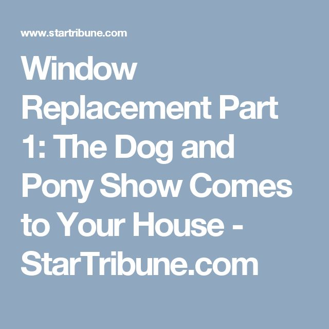 Window Replacement Part 1: The Dog and Pony Show Comes to Your House - StarTribune.com