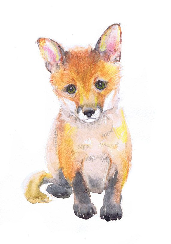 Baby Fox Art Watercolor Painting, Baby Prints Boy Girl Nursery Decor Fox Print, Wall art, Gift ideas, Woodland Animal Prints Watercolour   high quality