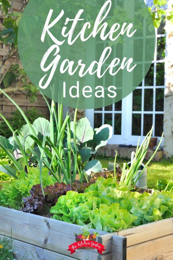 Kitchen Garden Ideas Kitchen Garden Gardening Tips Vegetable Garden