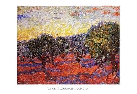 Olive Trees Vincent Van Gogh #impressionism