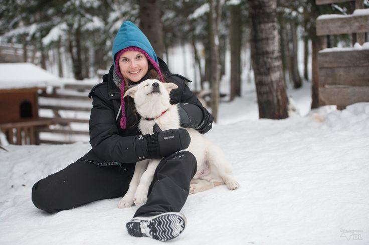❅ Un peu de neige pour réchauffer ton coeur et des chiens de traineau pour faire ton bonheur ❅ Chien de traineau & nuit en yourte au Saguenay (http://detourlocal.com/chien-de-traineau-yourte-canada-saguenay-lac-st-jean/)  #HébergementsAlternatifs, #LesImmanquables