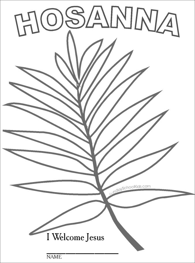 sunday school kids palm branch - Palm Tree Branches Coloring Pages