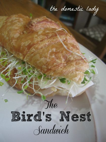 The Bird's Nest Sandwich. Delicious, airy, light and healthy. Turkey, cream cheese, swiss cheese, cranberry sauce and alfalfa sprouts. Mmm'mmm!