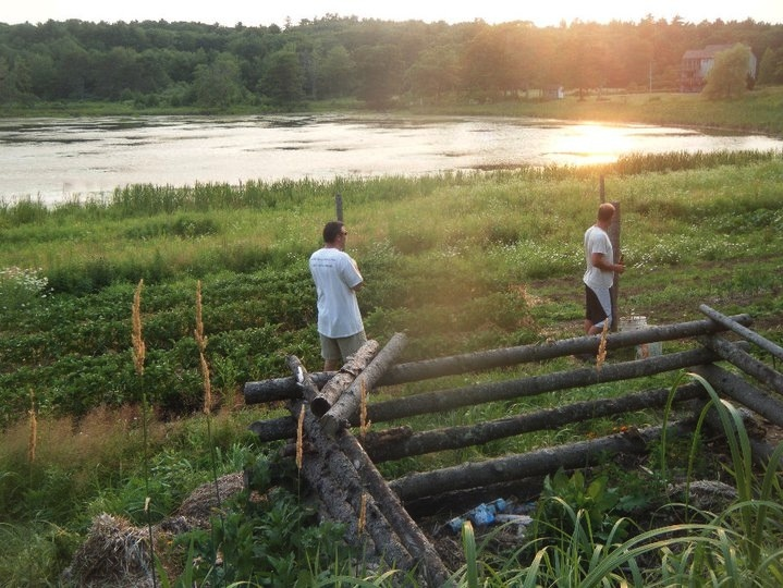 Somewhere in Maine, I wonder where?  Love the fence, we need to start doing this on Gotts Island
