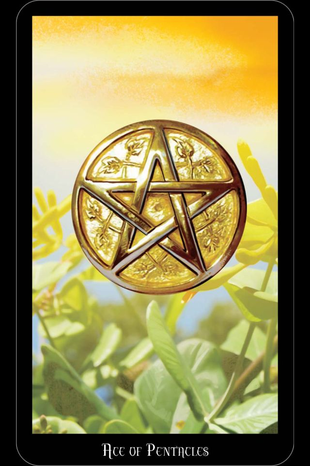 "The Ace Of Pentacles From My Witches Tarot. ""This Card"