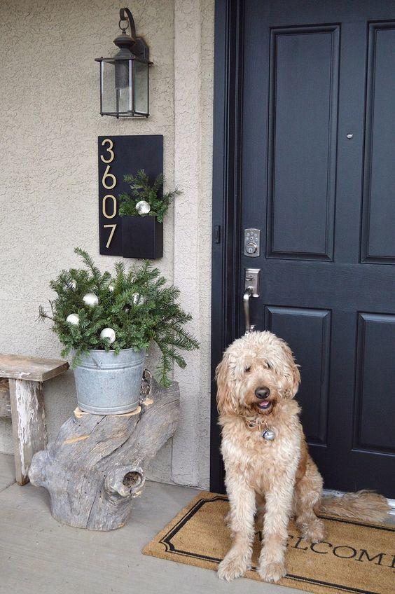 Painting My Front Door | Home | Front door paint colors
