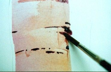 Watercolor Painting Tutorial - How to Paint Birch Trees