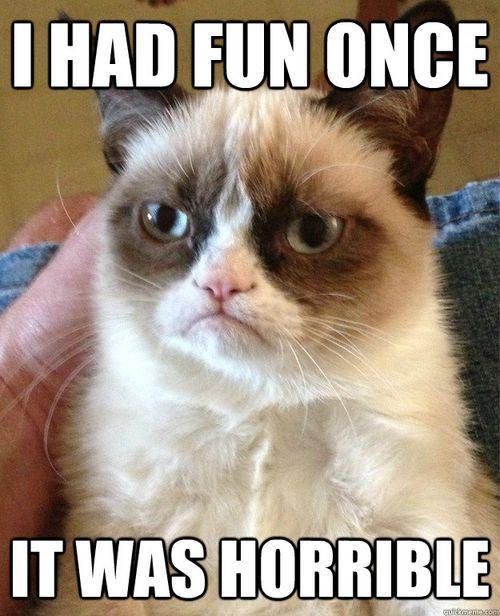 Crotchety kitty.