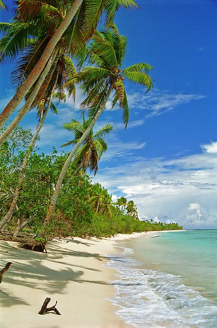 Palmtrees swaying over a beach at Uoleva, Tonga by LimeWave Photo, via Flickr.