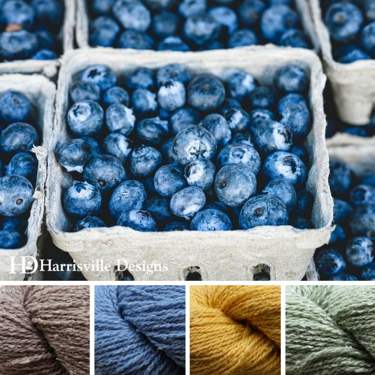 'Blueberry Harvest' color palette features Silk & Wool yarn in Cappuccino, Bluebell, Pale Daffodil, and Fern.