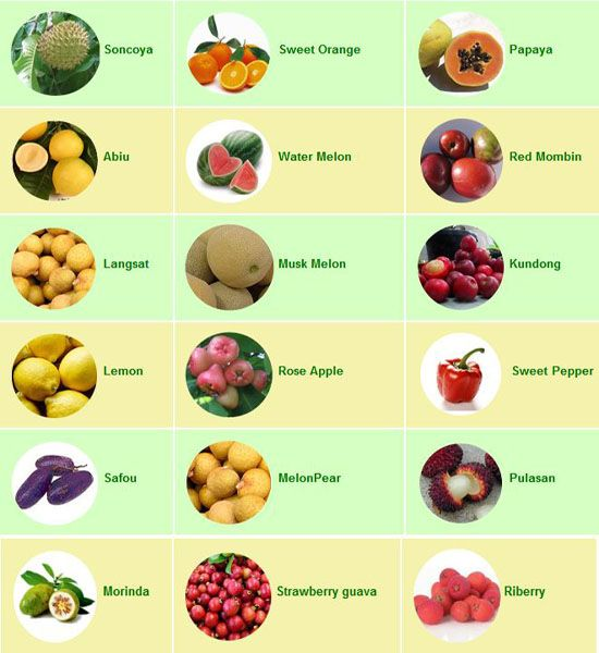 list of healthy fruits and vegetables healthy fruit snacks for adults
