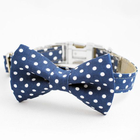 The Winston - Bow Tie Collar
