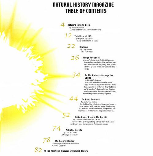 Concept layout for a table of contents for a Science Magazine