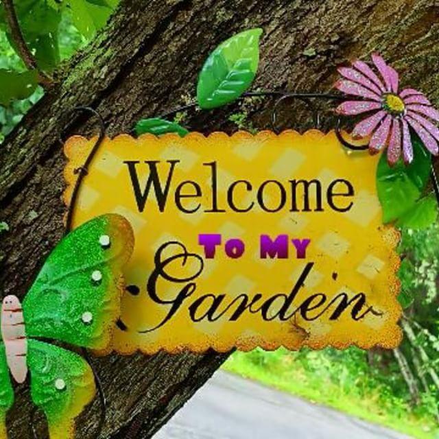 Welcome To My Garden Sign On The Tree Beside Of My #flowergarden  #westvirginia