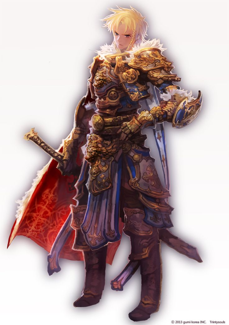 Anime male knight