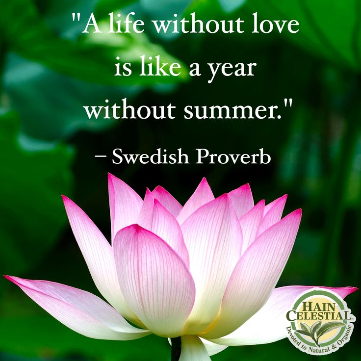 18 best Swedish proverbs images on Pinterest | Idioms, Proverbs ...