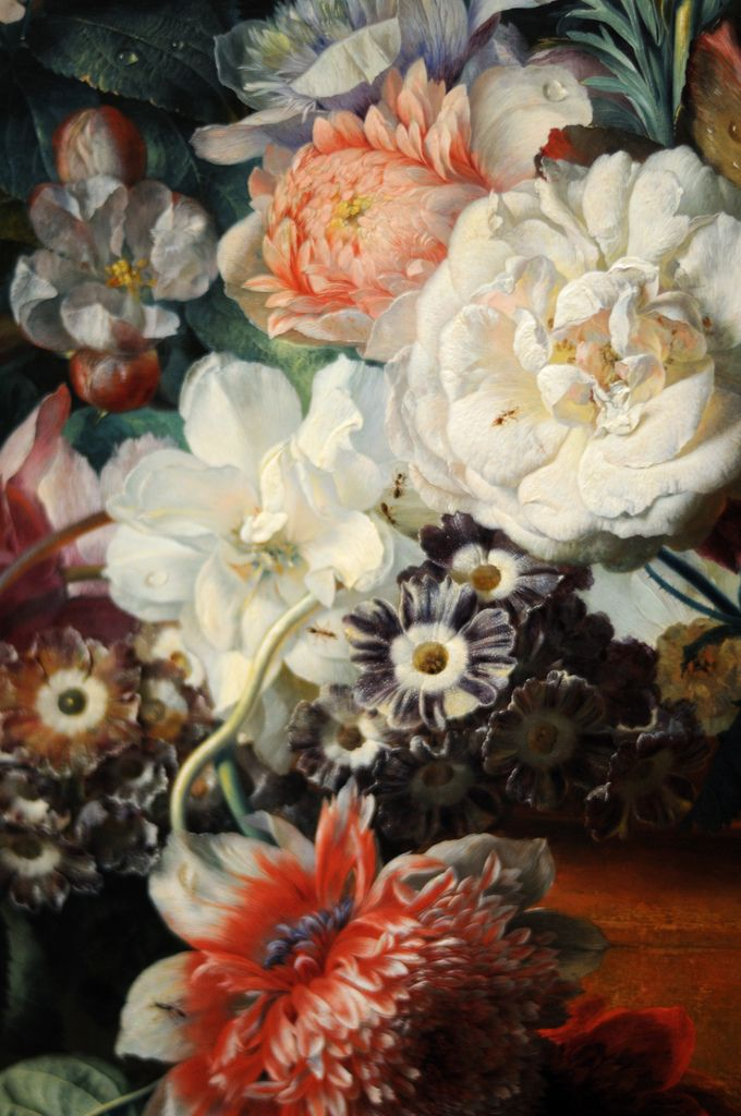 c0ssette:    Jan van Huysum,Vase of Flowers,1722. (Detail)