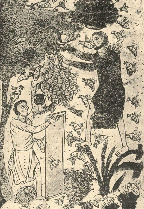 Высушивание, копчение и засолка как методы консервирования продуктов в Средневековье были уже известны. Сушили фрукты - груши, яблоки, вишню - и овощи. Засушенные…