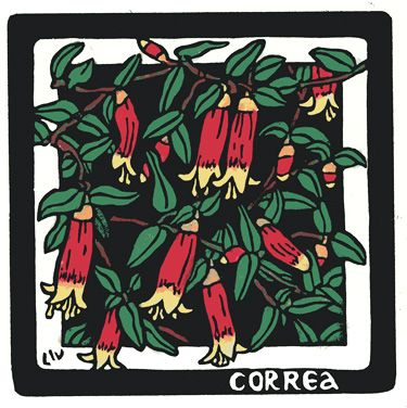 Correa Square - Limited Edition Handpainted Linocuts by Lynette Weir