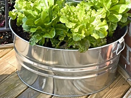 Container Gardening Alliance - tub and bucket - tiered garden